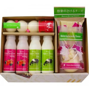 北海道 牧家 NEW乳製品詰め合わせ 1×2セット