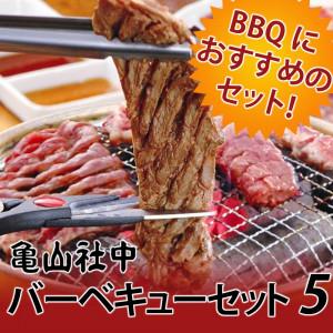 ★送料無料★亀山社中 焼肉 バーベキューセット 5 はさみ・説明書付き