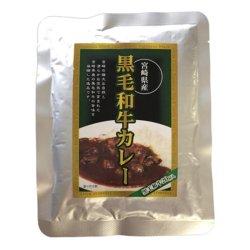 ばあちゃん本舗 宮崎県産黒毛和牛カレー 160g×15個